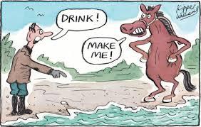 horse to water cartoon